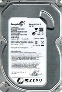 Seagate ST250DM000